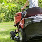 Jaké zahradní nářadí pořídit na úpravu dřevin?